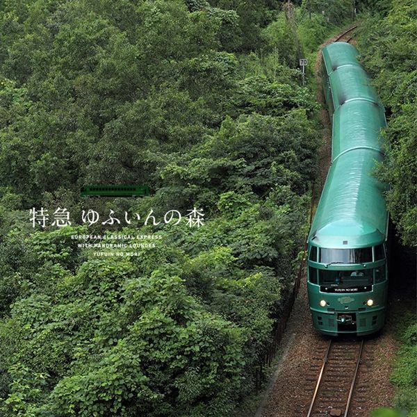 大分县拥有九州超人气的由布院之森列车,木质内装的列车质感